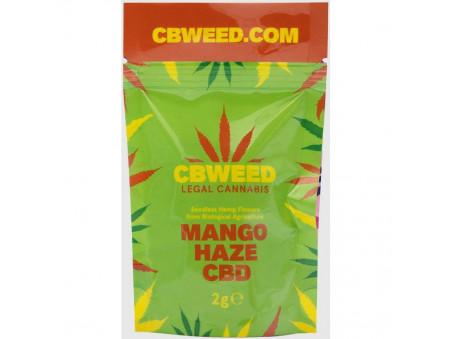 CBD konopí - Mango Haze CBD - indoor - 2 gramy - CBWEED